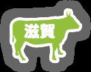 ico_beef_shiga